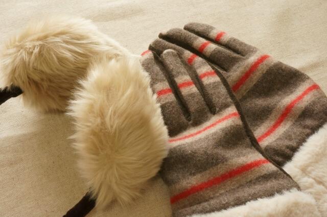 一月(冬)の話題・防寒対策