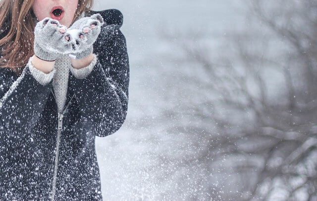 2月(冬)の話題・雪